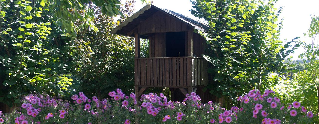 Der Garten unsere Pension - Pension & Ferienwohnung Schmidt